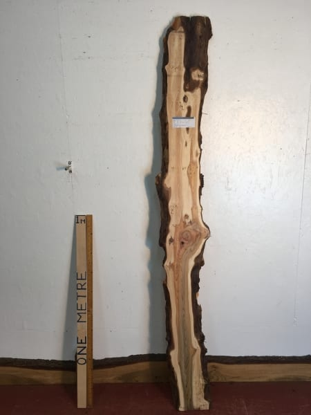 PIPPY YEW Natural Waney Live Edge Slab Wood Board 1557B-9