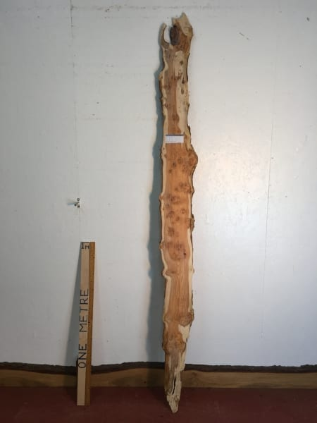 PIPPY YEW Natural Waney Live Edge Slab Wood Board 1557B-1