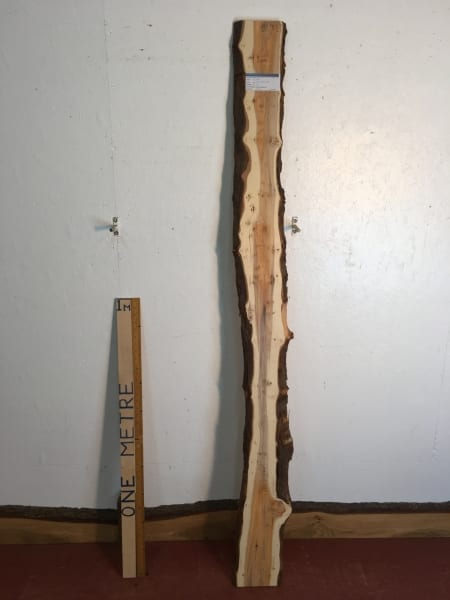 YEW Natural Waney Live Edge Slab Wood Board 1557D-3B