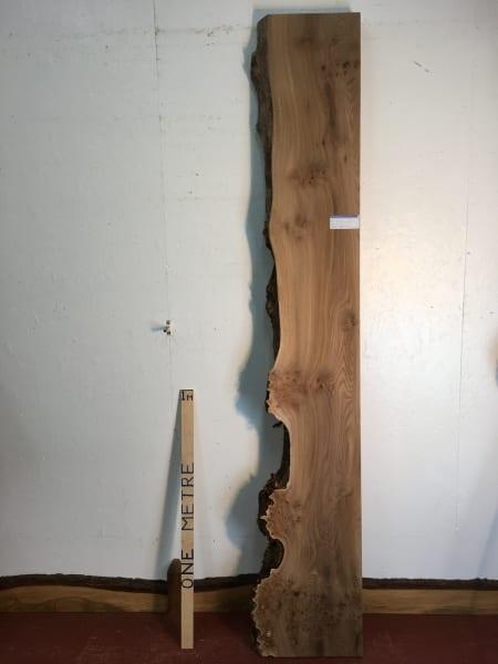 BURRY ELM Single Waney Natural Live Edge Board 1355A-3