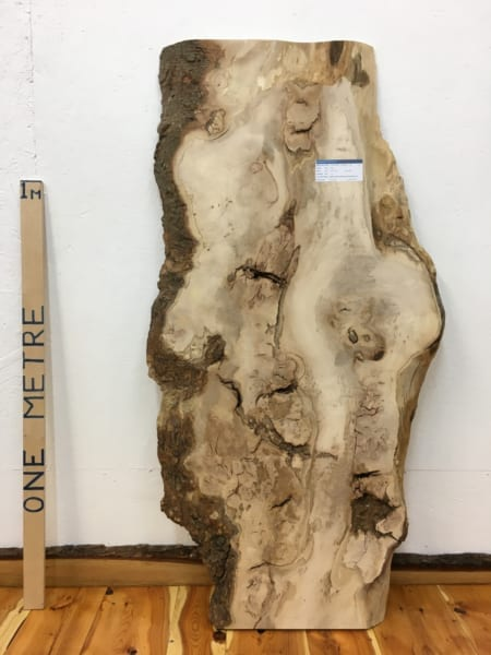 SYCAMORE Natural Waney Live Edge Slab Wood Board 1542A-1B