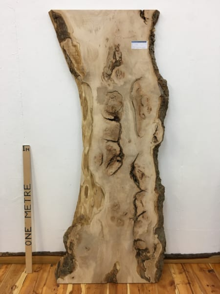 SYCAMORE Natural Waney Live Edge Slab Wood Board 1542B-8