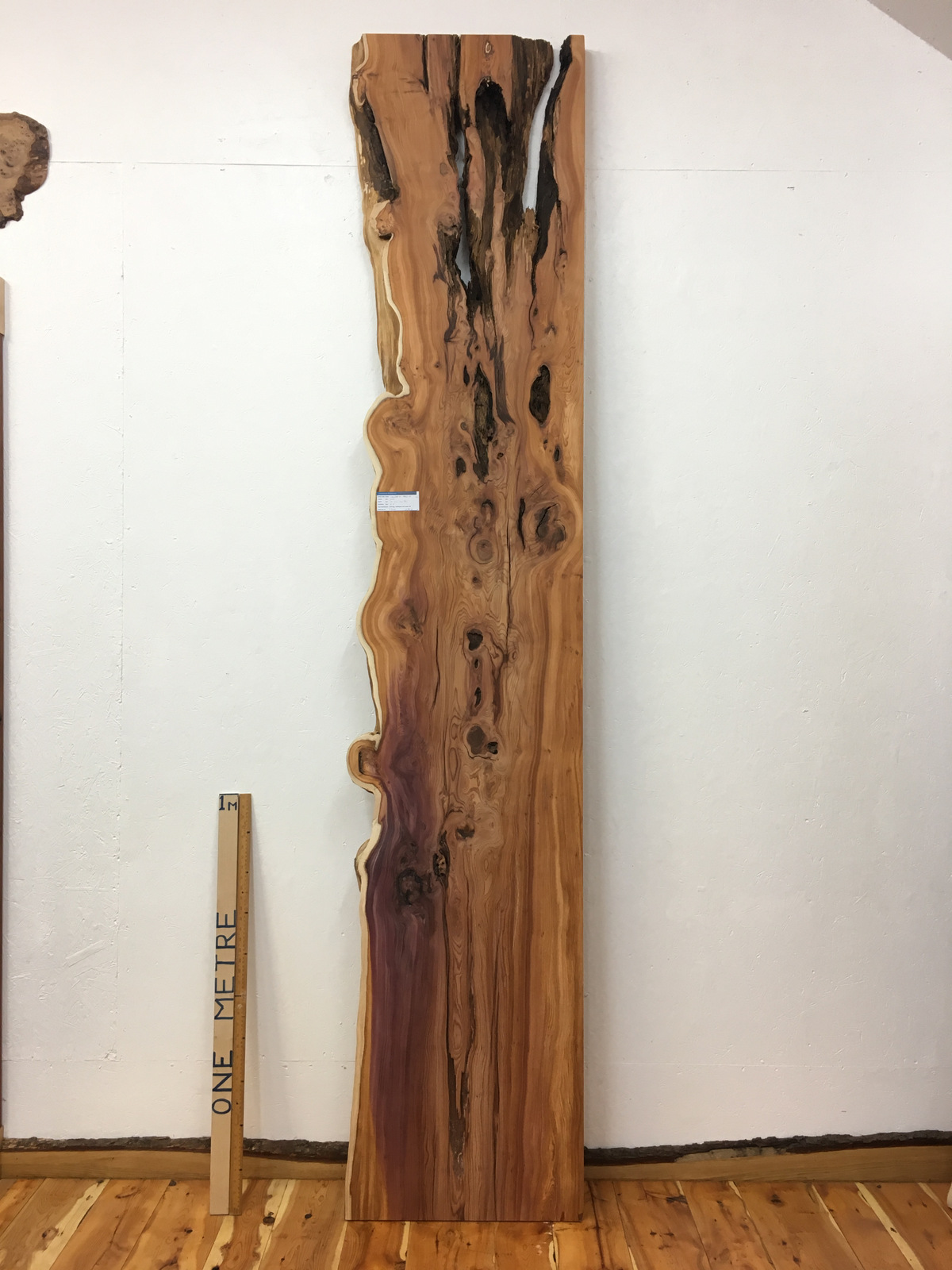 YEW Single Waney Natural Live Edge Board 1462-8