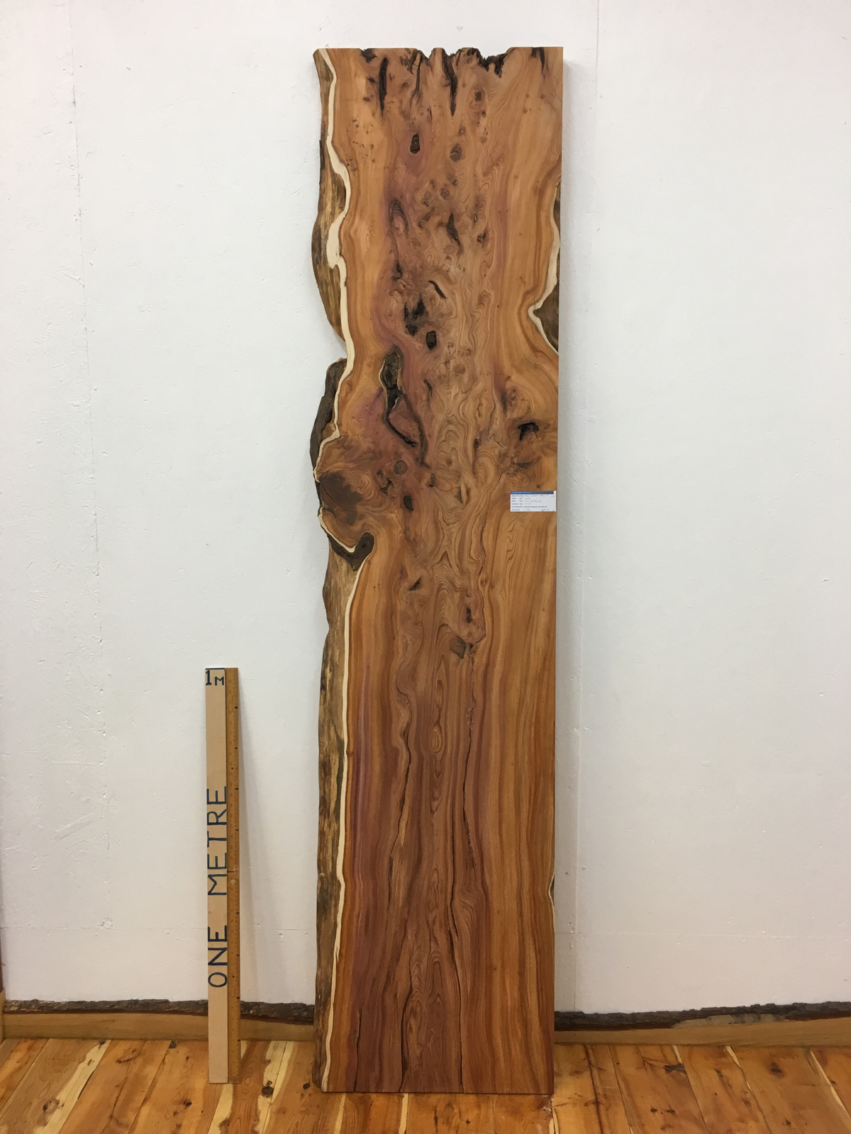 YEW Single Waney Natural Live Edge Board 1462-5
