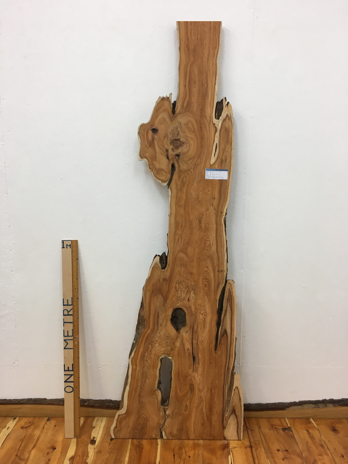 YEW Natural Waney Live Edge Slab Wood Board 1462-1