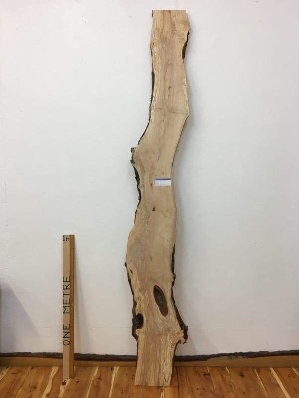 BIRCH Natural Waney Edge Slab Wood Board 1607-4