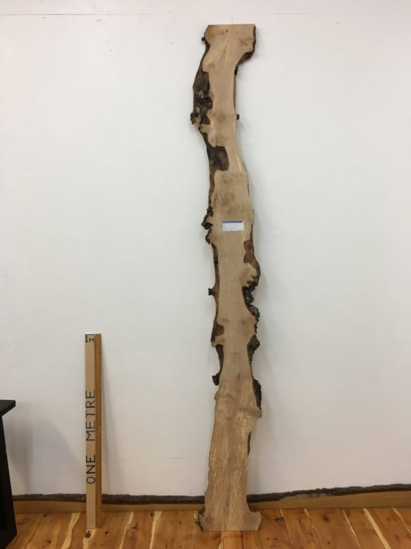 BURRY BIRCH Natural Waney Edge Slab Wood Timber Board 1643-4