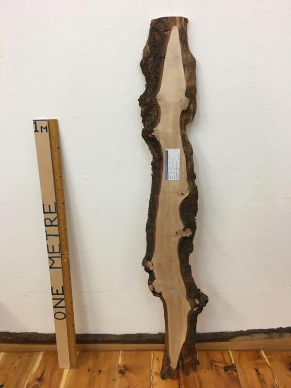 BURRY BIRCH Natural Waney Edge Slab Wood Timber Board 1625-1