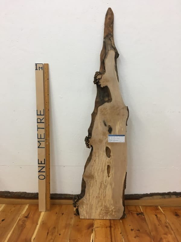 BURRY BIRCH Natural Waney Edge Slab Wood Timber Board 1643-2