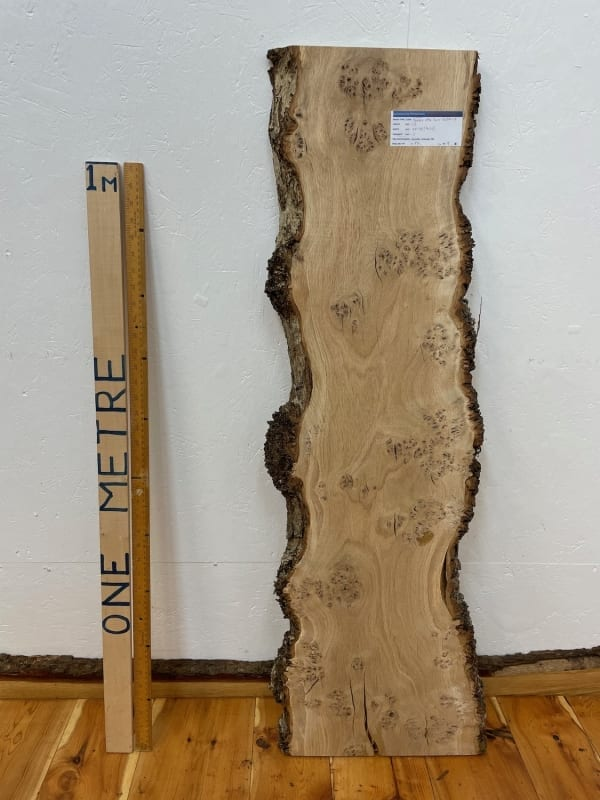 PIPPY / BURRY OAK Natural Waney Edge Slab Wood Timber Board 1563A-2 Thickness 3cm Kiln Dried Planed & Thicknessed Seasoned Hardwood Wildwood