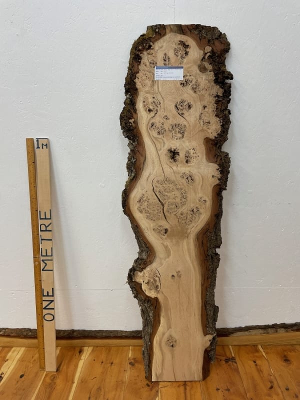BURRY OAK Natural Waney Edge Slab Wood Timber Board 1561A-9B Thickness 3cm Kiln Dried Planed & Thicknessed Seasoned Hardwood Wildwood