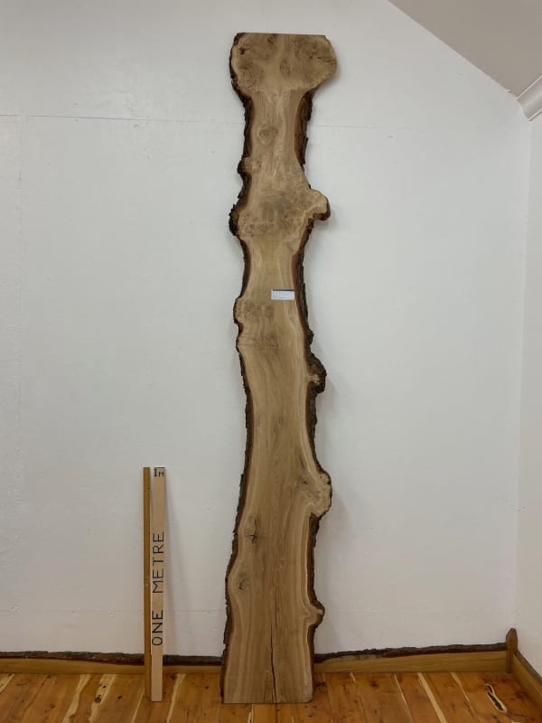 BURRY OAK Natural Waney Edge Slab Wood Timber Board 1559A-7 Thickness 3cm Kiln Dried Planed & Thicknessed Seasoned Hardwood Wildwood Wallart